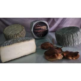 Moncedillo - Queso Original